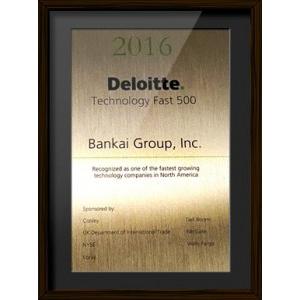 Deloitte's 2016 Technology Fast 500TM
